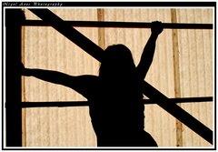 silhouette 002