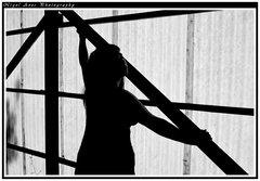silhouette 009