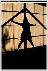 silhouette 016