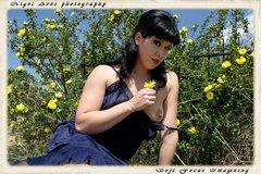 violetta-volare-colorado-020